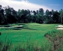 Carolina National golf course fairway photo