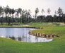 Brunswick Plantation golf photo