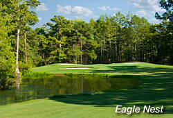 Myrtle Beach golf news Eagle Nest