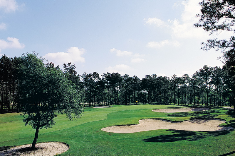 Lions Paw Golf Course